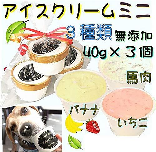犬 おやつ 無添加 ミニアイスクリーム果物&馬肉3種類セット Sサイズ 小型犬 超小型犬 わんちゃんの熱中症対策に あすつく 透明の袋に入れて、可愛く!リボンでラッピング! プレゼントしたら、間違いなく!大喜び!帝塚山WANBANA