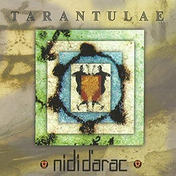 Tarantulae