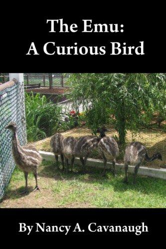 The Emu: A Curious Bird (English Edition)