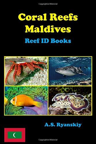 Marine Sea Life housses de coussin Rétro océan Octopus Squid Turtle Whale 45 cm CADEAU