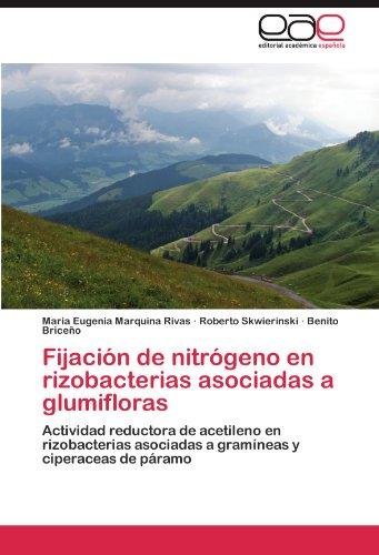 Fijación de nitrógeno en rizobacterias asociadas a glumifloras