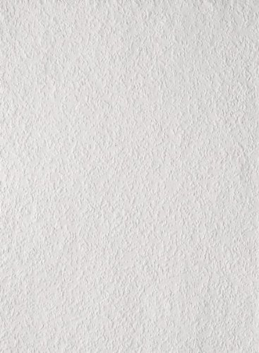 Erfurt Rauhfaser 40 Großrolle Kubisch Mittel weiss (Profiqualität) Länge:125 m/Breite:0,75 m für ca. 93,7 m²