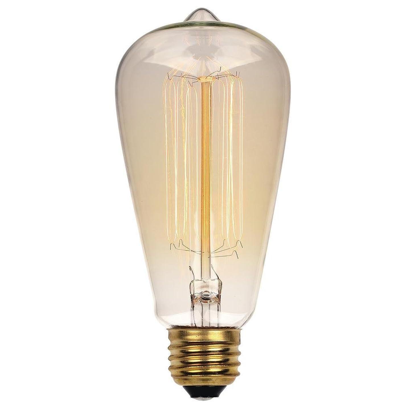 Westinghouse Lighting 0413200 60 Watt ST20 Clear Timeless Vintage Inspired Bulb with Medium Base