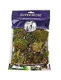 SuperMoss (21749) Sheet Moss Petite (Small Pieces) Dried, Fresh Green, 2oz