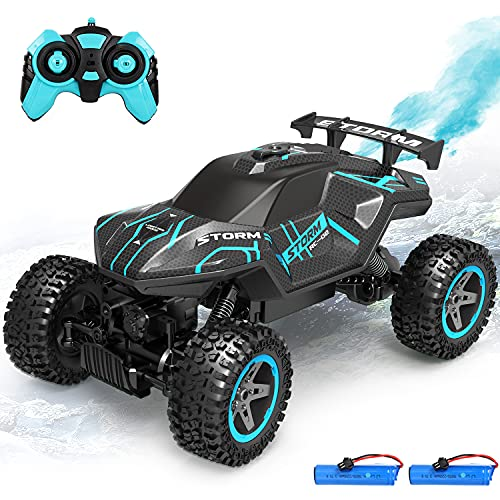 RC Cars Remote Control Car 1:16 4WD Off Road Rock Crawler, 2.4GHz All Terrain Monster Truck with...