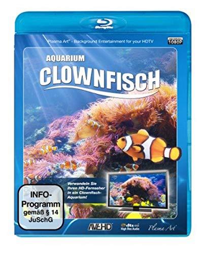 Clownfisch-Aquarium [Blu-ray]
