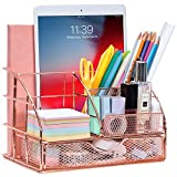 ARCOBIS Rose Gold Desk Organizer with Drawer for Women, Office Desktop Pen Holder Caddy with 5 Compartments + 1 Large Drawer | The Mesh Collection