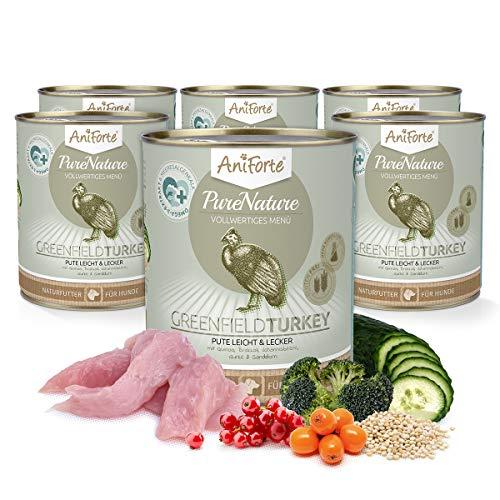 AniForte Hundefutter Nass GreenfieldTurkey 6 x 800g – Nassfutter für Hunde, Frische Pute, Gemüse & Früchte, hoher Fleischanteil, Natürliches Hundenassfutter mit Extra viel Fleisch, getreidefrei