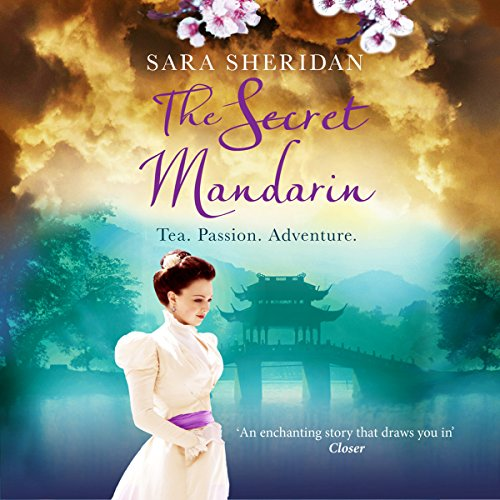 The Secret Mandarin cover art