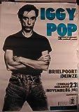 Pop Iggy–70x 100cm zeigt/Poster