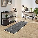 Carpet Studio Ohio Alfombra Pasillo 67x180cm, Alfombras para Dormitorio, Cocina & Pasillo, Fácil de Limpiar, Superficie Suave, Pelo Corto - Platino/Gris
