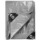 kengbi Lona de diseño multiusos de plata, con impermeable, resistente a los rayos UV, resistente a la corrosión, resistente al desgarro, con ojales y bordes reforzados