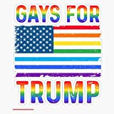 TCT Trading Gays for Trump Sticker Vinyl Stickers Waterproof Decal Car, Laptop, Bumper Stickers 5'