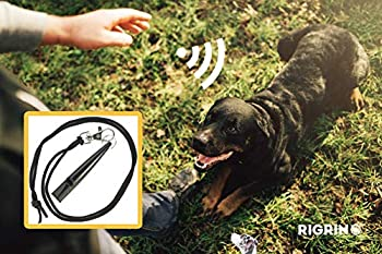 RIGRIN Sifflet d'entraînement pour chien avec cordon