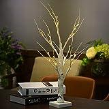 DAXGD Lámpara de escritorio LED Árbol de abedul blanco, 23.6 pulgadas, perfecto para el hogar Fiesta de fiesta Boda de Navidad (Luz Blanca Caliente)