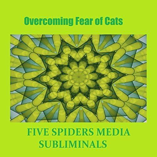 Five Spiders Media Subliminals