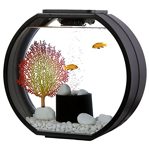 AA Aquarium AA10L-OGD-BLK Deco O mini