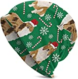 Rough Collie Christmas Holiday Jersey para Adultos, Cap Adulto Jersey Completo para Mujer, Poliéster