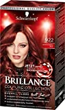 Schwarzkopf Brillance Intensiv-Color-Creme, 922 Kastanienrot Stufe 3, 3er Pack (3 x 143 ml)