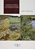 Patrimonio salinero y humedales estacionales en el Guadalquivir medio: 19 (Estudios de Geografía)