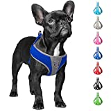 Fida Step-in Dog Harness, Superior Reflective Puppy Vest Harness- All Weather Air Mesh, Adjustable Harness for Small Dogs (S, Blue)