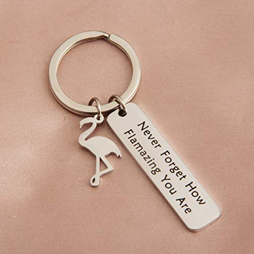 TGBJE Flamingo Jewelry Never Forget How Flamazing You Are Bracelet Expandable Bangle BFF Gift (flamingo keychain)