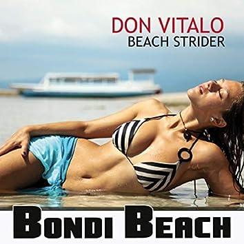 Beach Strider