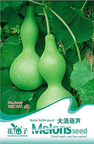 Vente 100 / sac santé balcon de semences d'asperges en pot de semences de légumes Hot ,, sweet violet / graines d'asperges vertes, 15pack