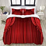 Nonun Funda nórdica, Teatro clásico Retro Escenario Rojo, camaing Set Ultra Comfy Lightweight Luxury Microfiber Sets