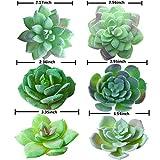 Zoom IMG-1 piante succulente artificiali trubuy 12