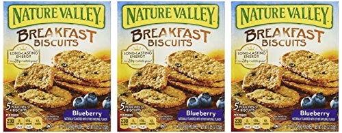 Nature Valley, Breakfast Biscuits, Blueberry, 8.85oz Box (Pack of 3)