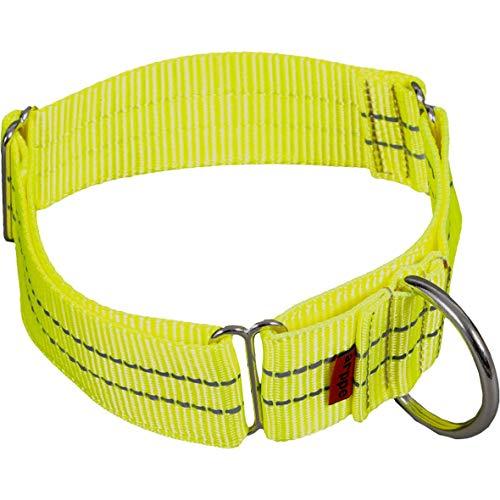 arppe 196084040013 - Collar de Nylon Educativo Reflectante, Amarillo