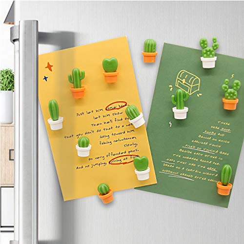 12pcs Cactus Magneti Frigo, Cucina Ufficio Magneti Set Bella Pianta Succulenta Magneti Frigorifero Decorazioni per La Casa Adesivi Magnetici Decorazione Regalo
