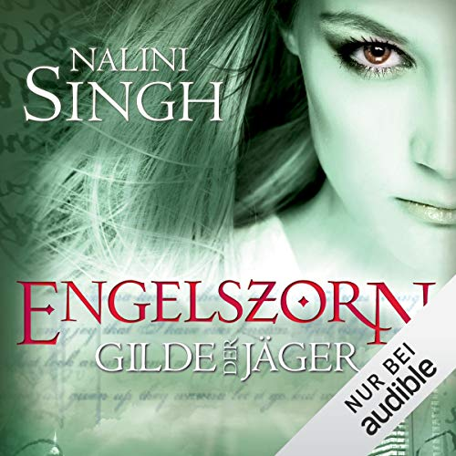 Engelszorn audiobook cover art