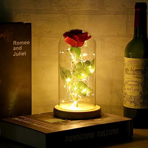 COFEMY Kit de Rosas,Beauty and The Beast Rose, Elegante Cúpula de Cristal con Base Pino Luces LED, mamá, Boda, Aniversario,decoración del hogar (Control Remoto)