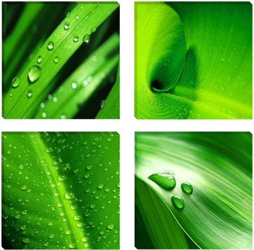 Visario Leinwandbilder 6601 Bild auf Leinwand Blätter, 4 x 30 x 30 cm, 4 Teile, grün