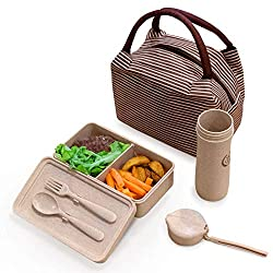 Best Teacher Lunch Bag Review - Eco-Wheat Straw Recycled Plastic Lunch Bag Set