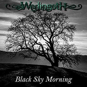 Black Sky Morning