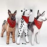 Jet Creations Inflatable Dalmatian Dog Husky German Shepherd 3 Pack Inflatable Stuffed Animal Plush Plus 3 Bandana 1 Marker. Size 32 to 41 inch Long. JC-3DOGZZ, Multi