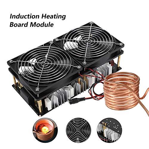 12V-48V 2500W Hochfrequenz Induktionsheizer, ZVS ZVS Induction Heating Board Module Flyback Driver Heater mit Tesla Coli