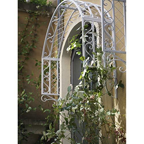 YICOL Rosenbogen Torbogen Eisen Fenster Türverkleidung Wandgitter für Kletterpflanzen Ivy Roses Cucumbers Clematis, Schwarz/Bronze/Weiß