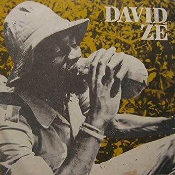 O Melhor de David Zé