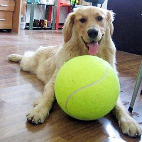Alxcio Giant Hundespielzeug Bälle Robust Pet Tennis Ball für Kleine HundeTennisball für Haustiere Große Junge Hunde Bester Trainer 9.5 Inch