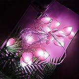 20 Led Catena Luminosa Interno Rosa, Filo di Luci Led a Forma di Cuore, Luci Fatate Luce Led USB 3m, Lucine LED Decorative per Camera da Letto, Balcone, Giardino, Feste, Matrimonio