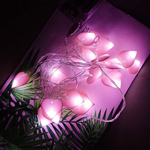 20 LED Guirnalda de Luces de Hada USB, Luces de Cadena de Corazón Rosa 3M/ 9.8Ft, Cálido Decoración de Románticas para Jardín, Interior, Fiesta, Boda, Festival, IP65 Impermeable