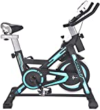 TEHWDE Spinning Bike Cycling Bike Exercise Bike Pro Indoor Cycling Spin Bike Trainer Bicycle Cardio Fitness Stationary Indoor Pro Indoor Training Equipment for Home Gym Cardio Workout