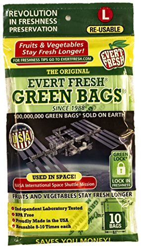 Ever Fresh, Bags Stay Fresh Large Conventional, 10 Count