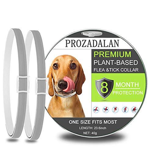PROZADALAN Collare Antipulci Cane Impermeabile, Design Impermeabile e 8 Mesi Efficacia Collare Antiparassitario Antizecche Regolabile Naturale per Piccoli Animali Domestici di Taglia Media(23.6inch)