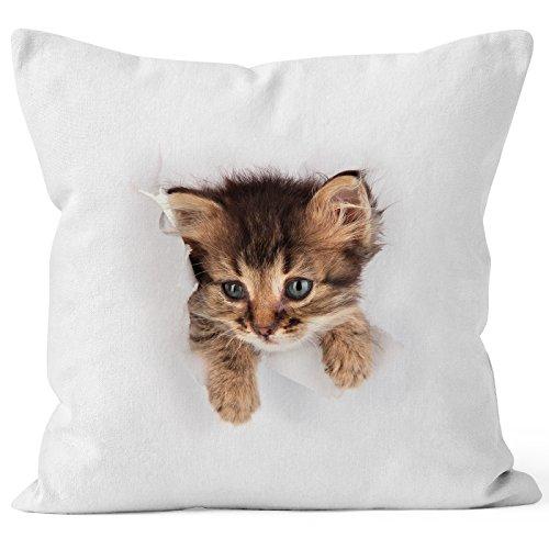 MoonWorks Kissen-Bezug mit süßem Katzen-Aufdruck Katzen Baby schaut aus dem Kissen weiß Unisize