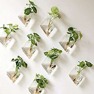 Kingbuy 4 Pack Wall Plant Terrariums Glass Hanging Planter Diamond Air Plants Holder Indoor Home Office Living Room Decor vase Succulent Container